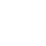 Management Systems icon